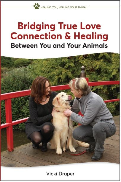 Healing You, Healing Your Animal
