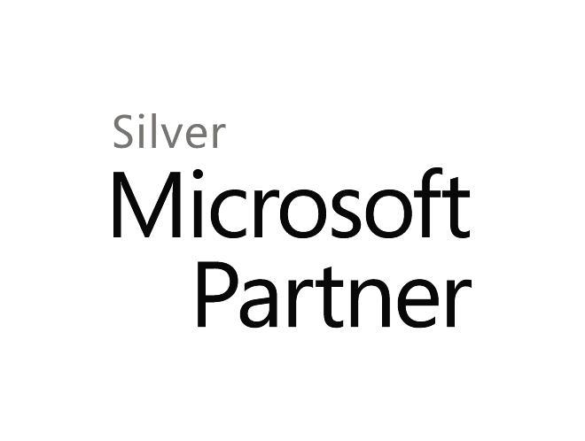 MS-Silver-logo