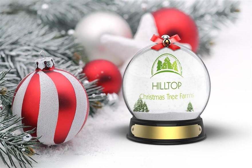 canada based hilltop christmas tree farms first tree of the season gifted to us soldiers family - Hilltop Christmas