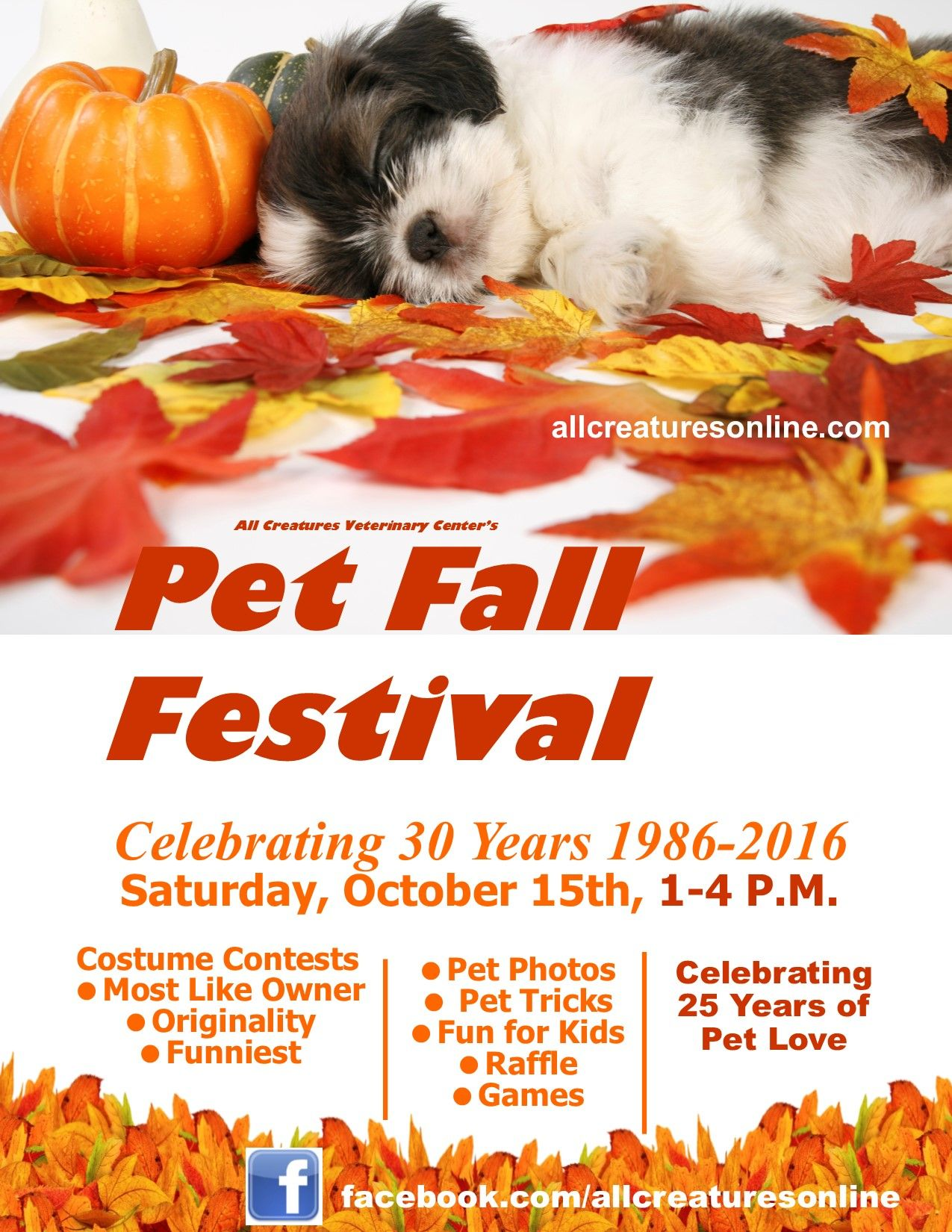 All Creatures Veterinary Center's pet fall festival