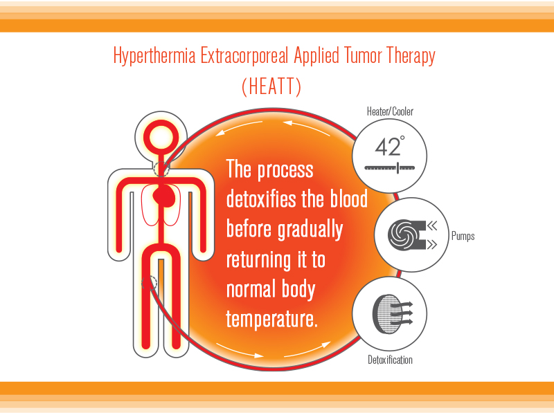 Heatt system for solid tumor cancers from Verthermia