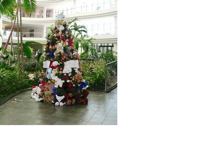 Teddy Bear Drive Expands To More Locations Goodwill