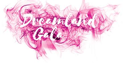 Dream Foundation's 2016 Dreamland Gala
