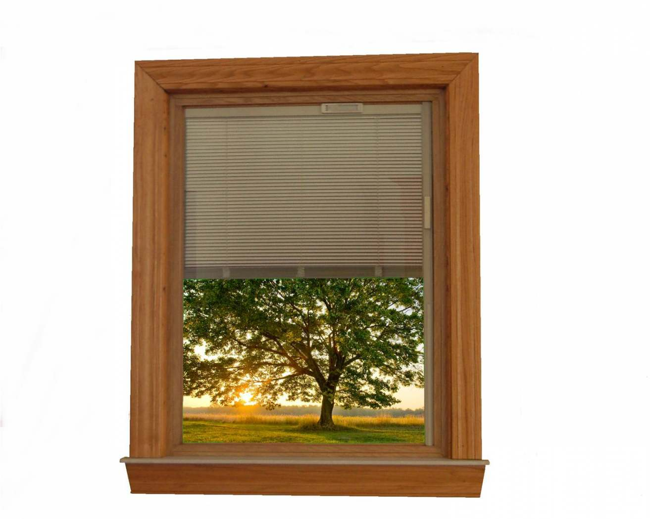 picture window with blinds between the glass