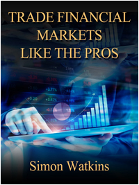 Trading strategies in financial markets