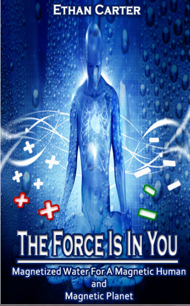 The Force Is In You Cover