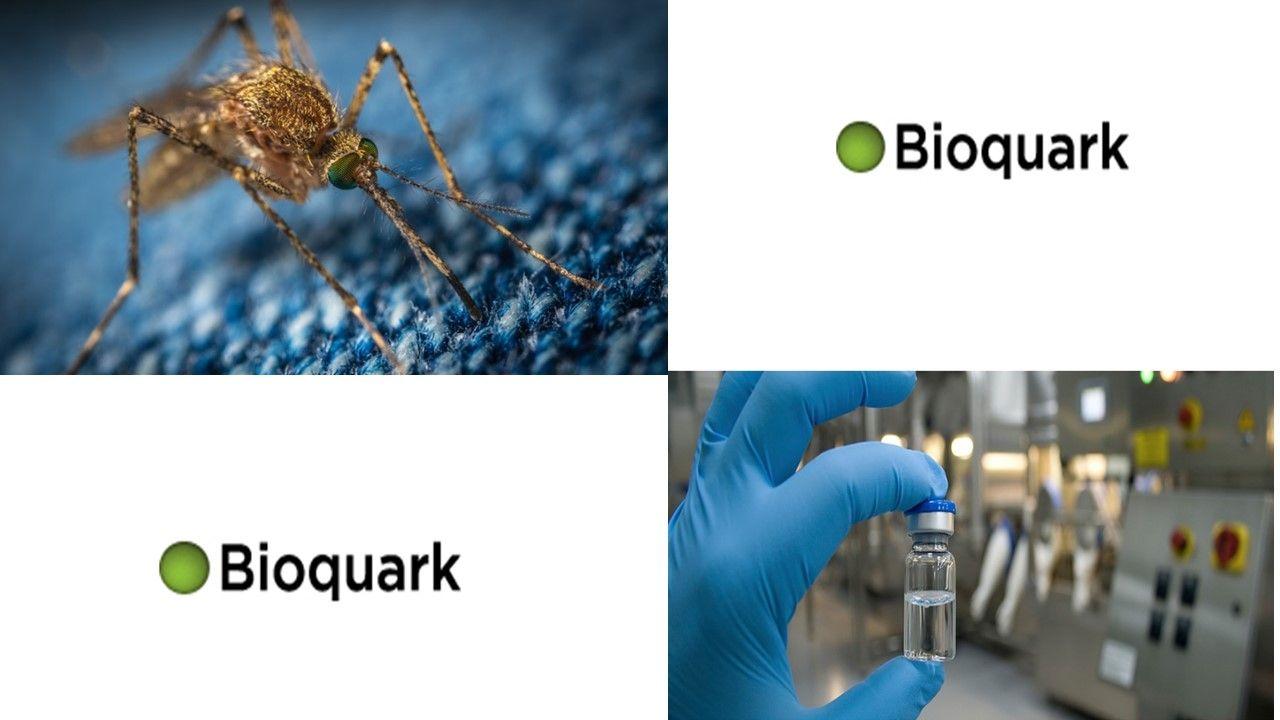 mosquitoslide