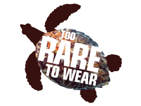 Help Save the Hawksbill