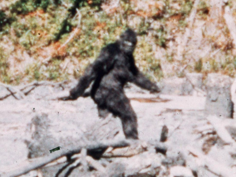 "Help STOP the ""Killing Bigfoot"" Broadcast in the United States and Canada"