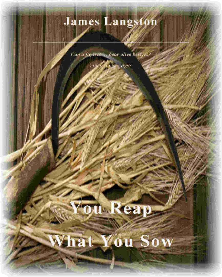 You Reap What You Sow_PRLog