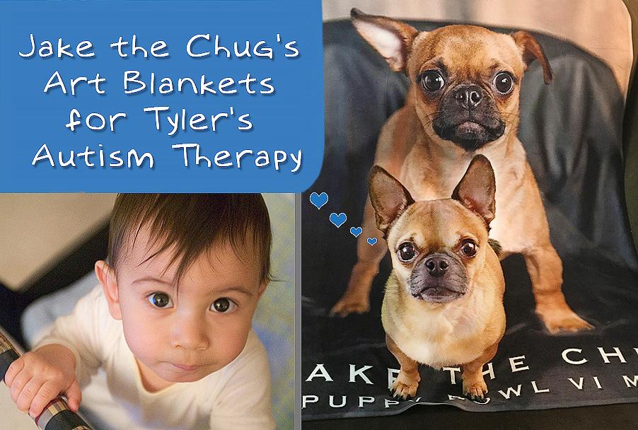 The promotional artwork for the Jake the Chug Art Blanket fundraiser.