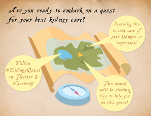 Follow the campaign using #KidneyQuest on Facebook & Twitter.