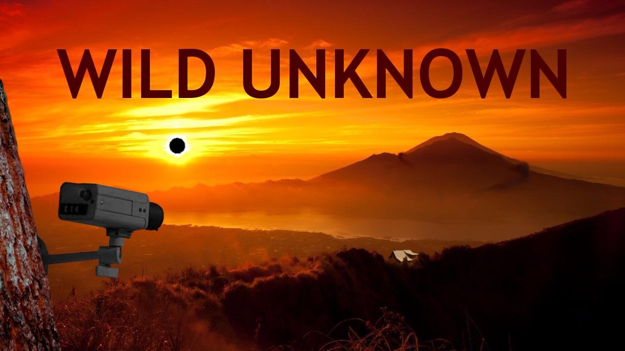 Wild Unknown Banner