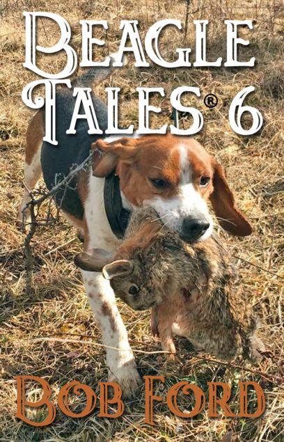 Beagle Tales 6