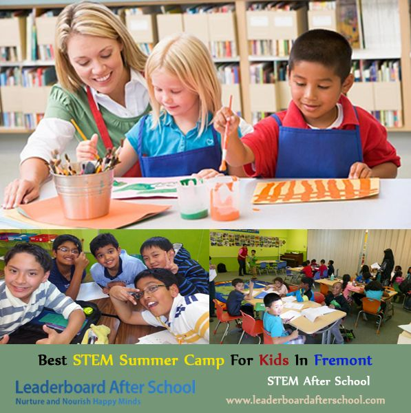 Fun Summer Stem Activities: Providing A Best STEM Summer Camp For Kids In Fremont