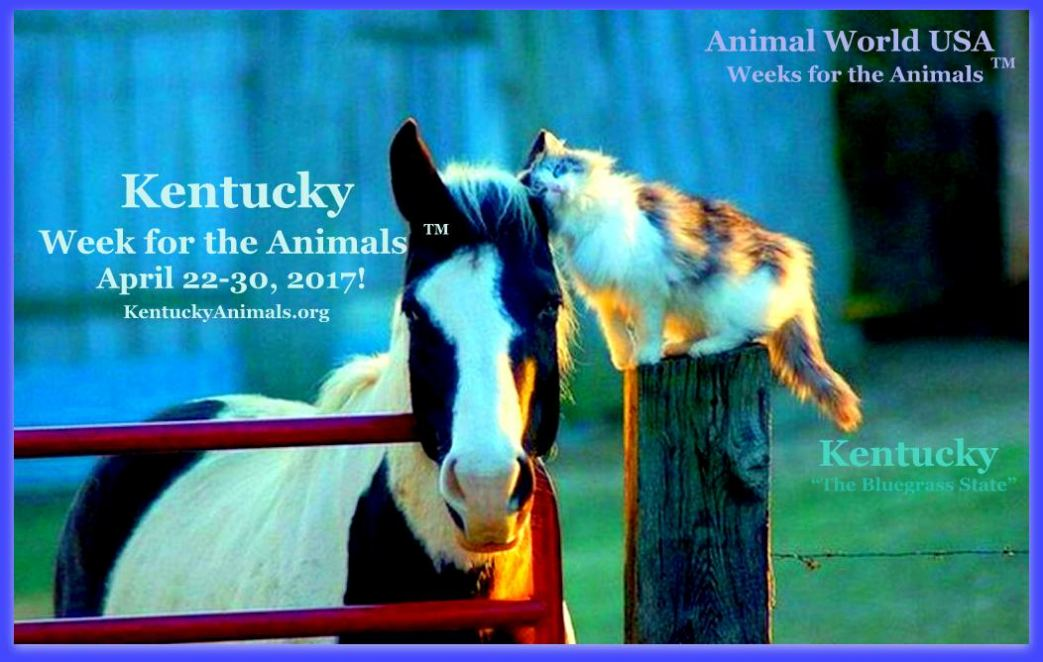 Kentucky Week for the Animals 2017