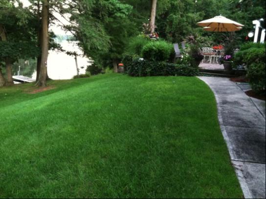 Pearl's Premium Lake House Lawn