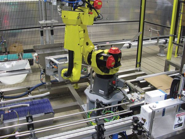 Case Packing Robotic