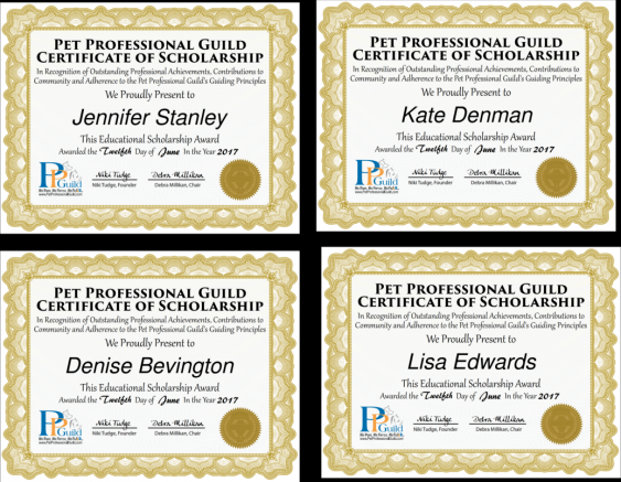 PPG Scholarship Certificates