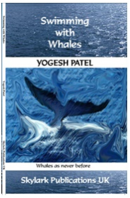 Swimming with Whales: ISBN 9780956084057