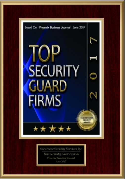Top Security Firm 2017