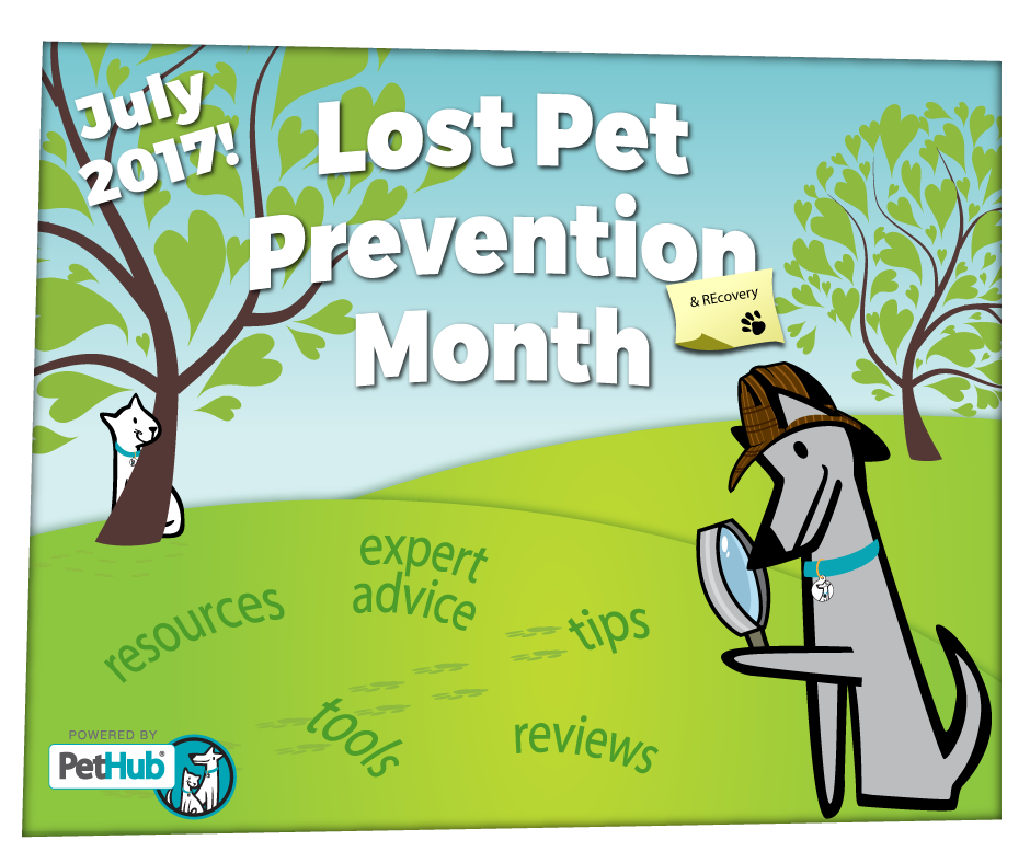 2017 Lost Pet Prevention Month