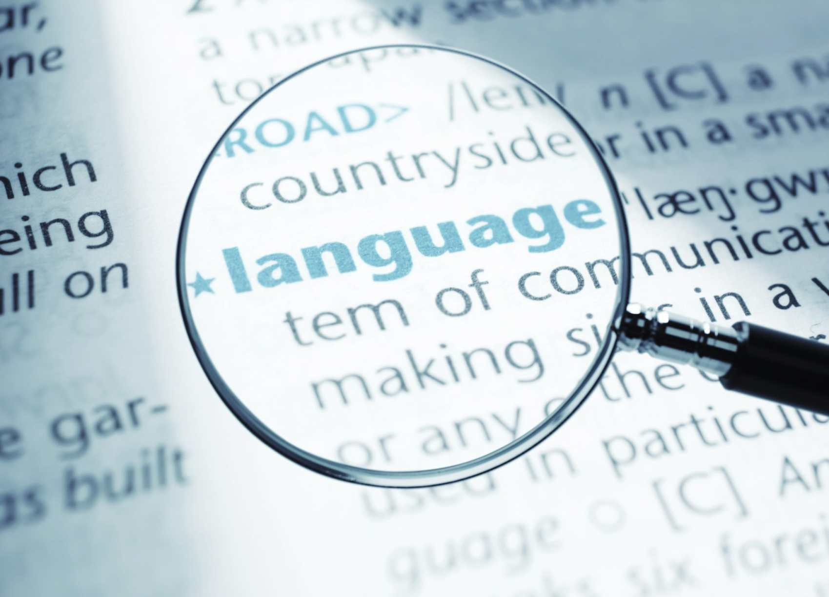 Cyber Linguistics