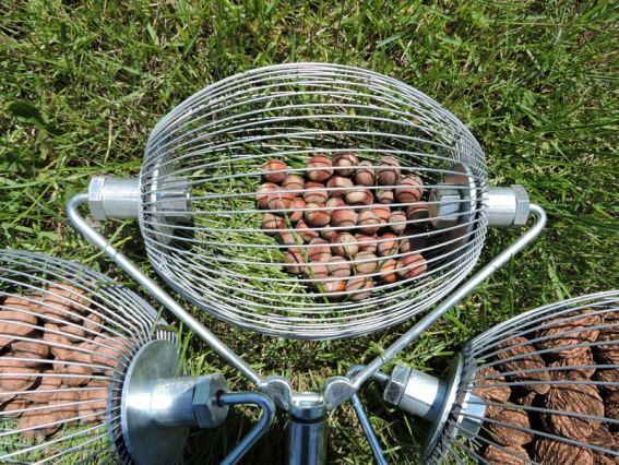 nuts 9