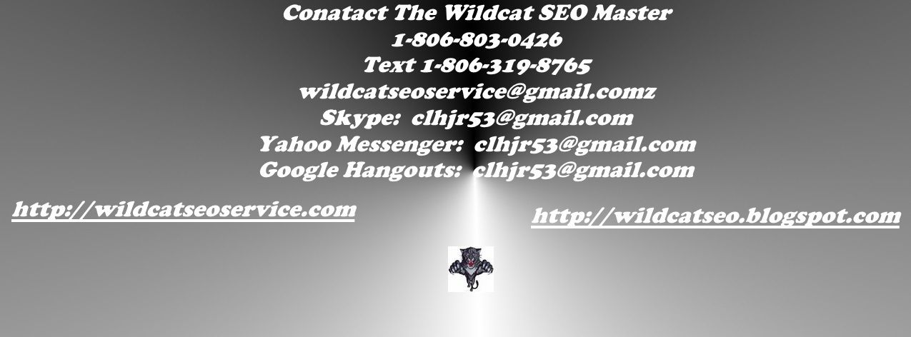 contact-the-wildcat-seo-master