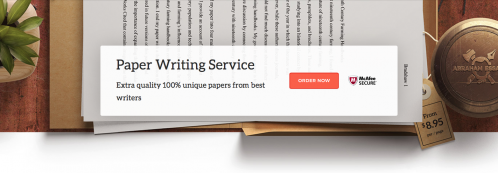 Custom write my essay