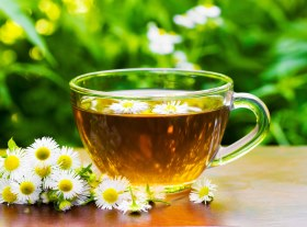 Chamomile proven for good sleep and better health