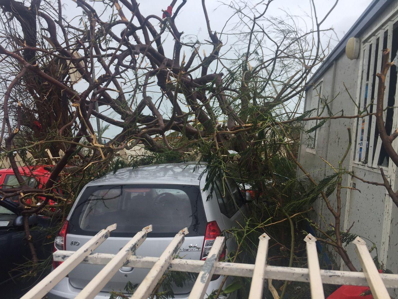 Damaged Caars By Irma