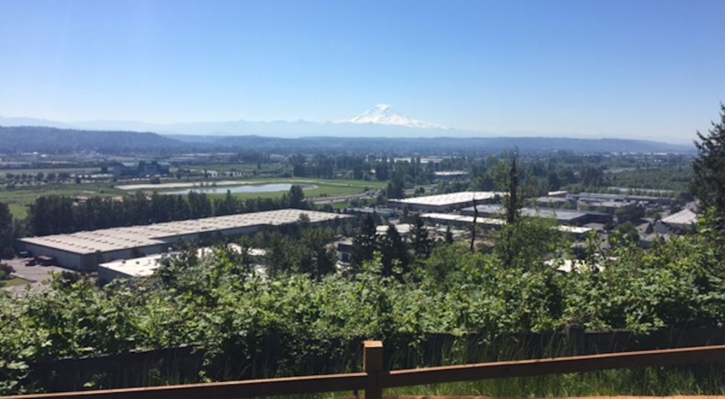 Wyncrest opens this weekend and offers a homesites with views.