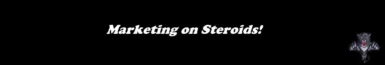 marketing-on-steroids WILDCATSEOSERVICE.COM