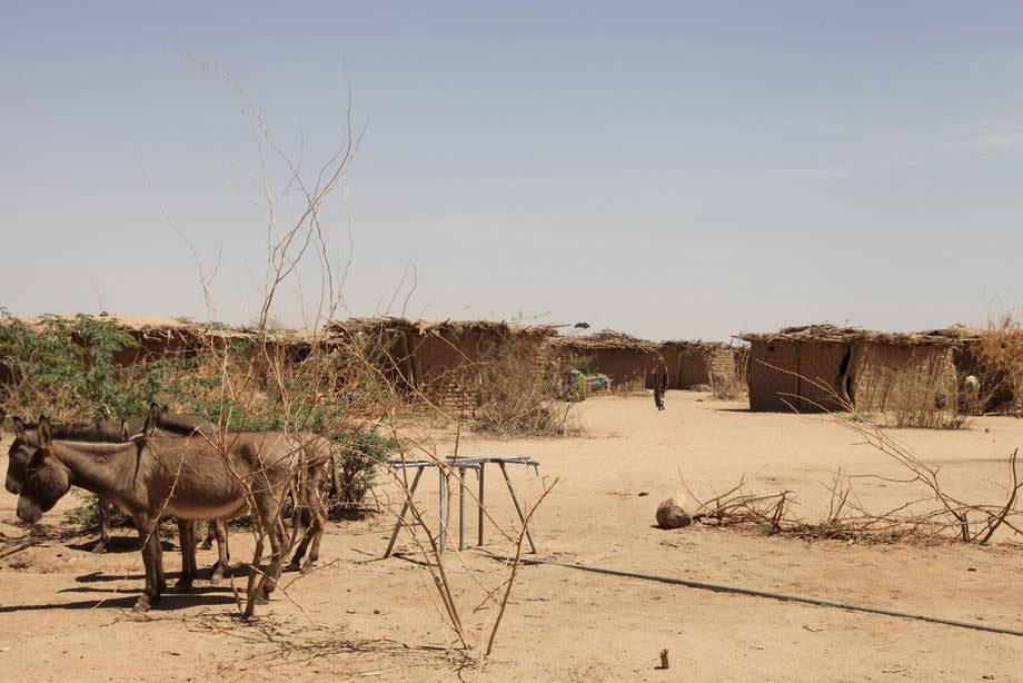 Aid & Development Africa Summit, Photo Credit: FAO