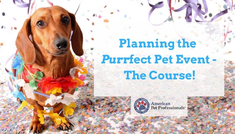 Copy of Planning the Purrfect Pet Event - The Cour