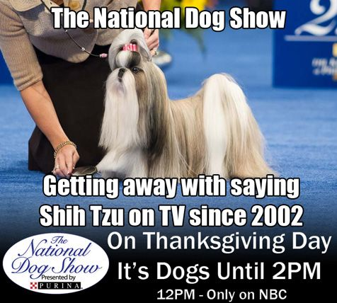 Pet Life Radio National Dog Show Meme Contest