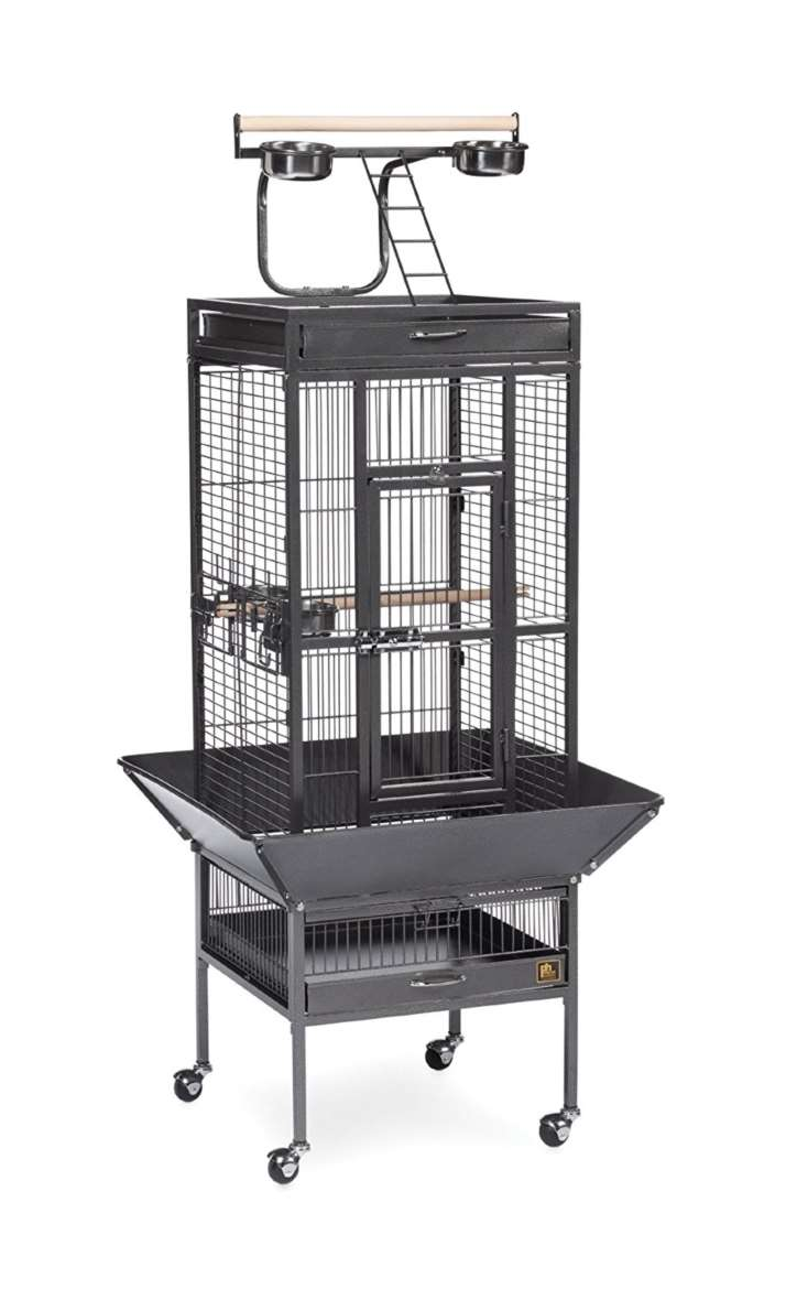 Prevue 3151BLK Wrought Iron Select Cage