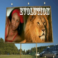 Angie B Evolution