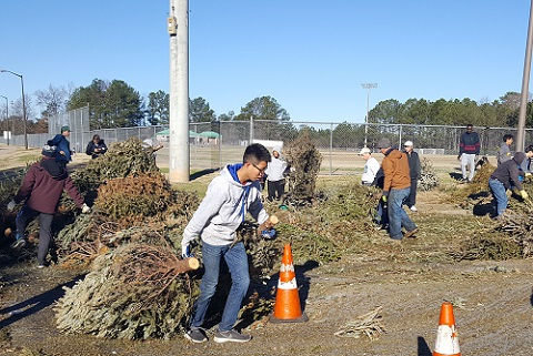 Volunteers Sift Through Donated Live Christmas Trees During Treecycling Event