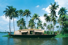 Disover the beautiful backwaters of Kerala
