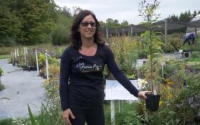Karen Abrahams at Nursery (photo: Landscape Ontario)