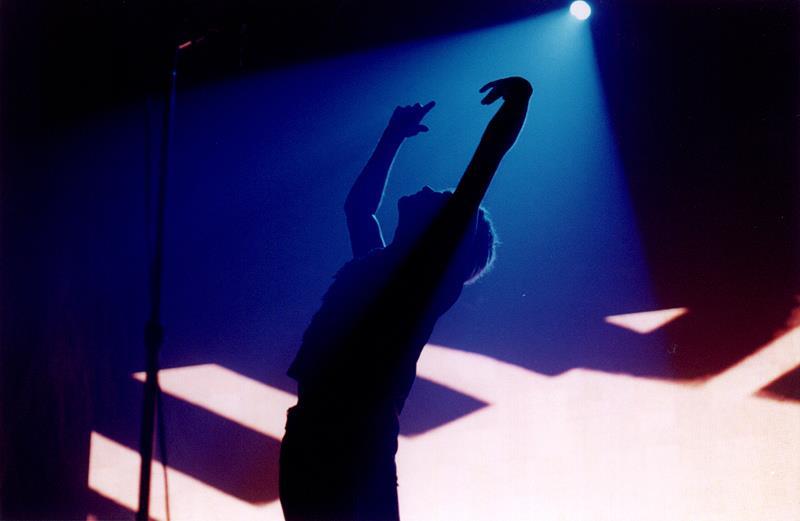 David Bowie by Eva V.D. Valk