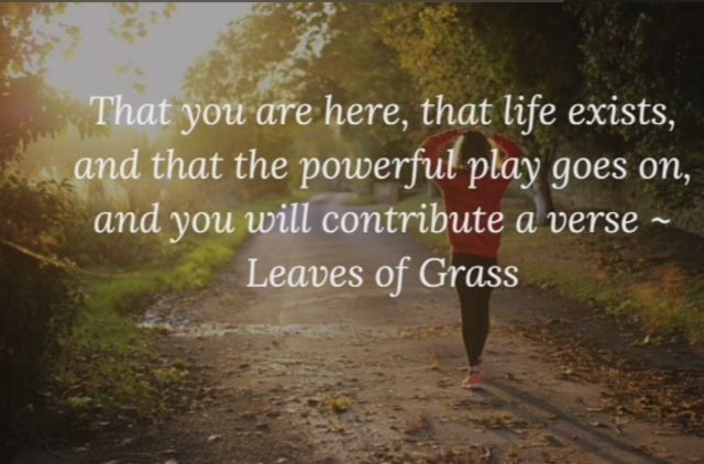 """ Leaves of Grass"""