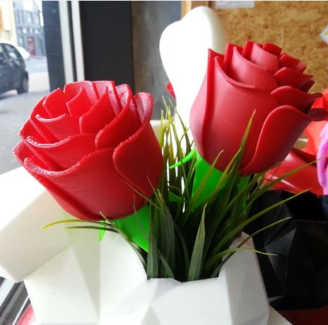 3D-Print Roses for Valentines Day with your Neva From Dagoma USA