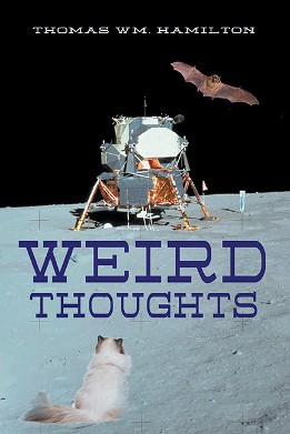 Weird Thoughts