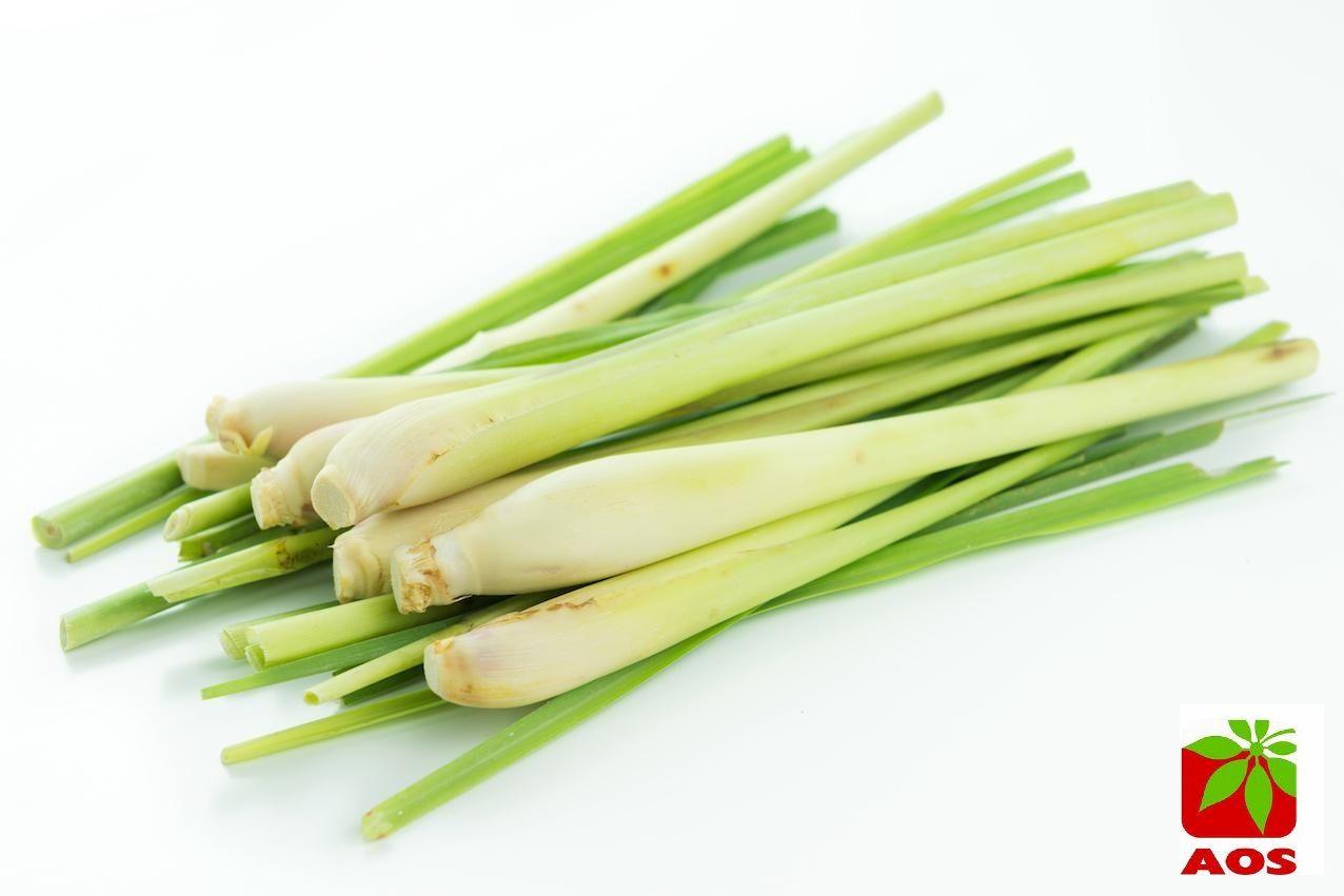 lemongrass Aroamtherapy Oil