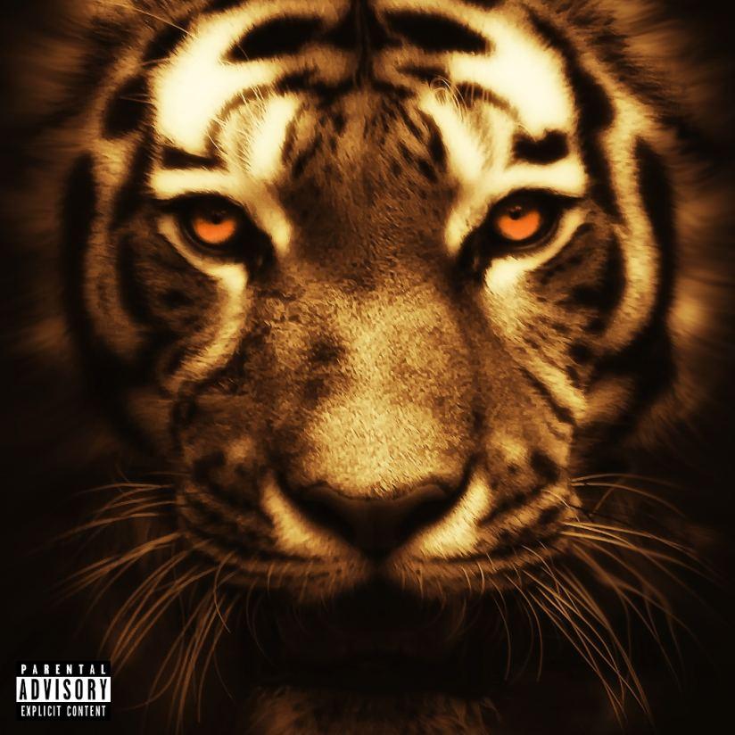 """New Album-- """"Wild One"""""""