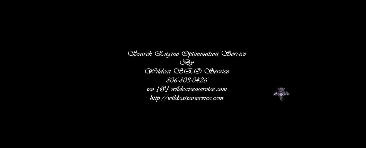 Contact Wildcat SEO Service