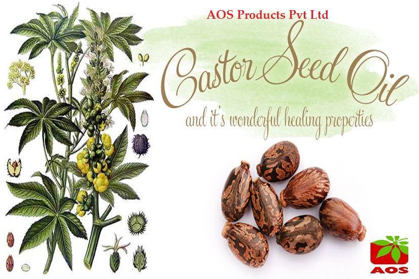 castor-seed-oil-AOS